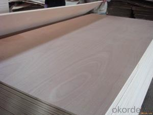 Commecial Plywood Veneer Faced Plywood Best Quality