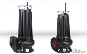 Small Vertical sewage Pumps