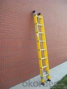short fire rescue ladder