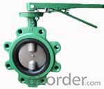 butterfly valve regulating flow