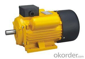 Electric Motor YCL