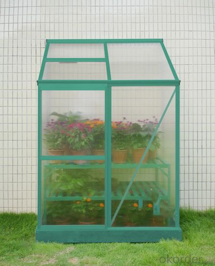 Garden Greenhouse for Plants and Flowers