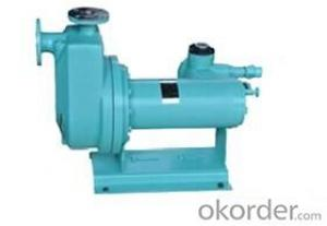 HZ Self-priming Chemical Pump