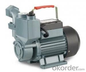 WZB Self-priming Peripheral Pump