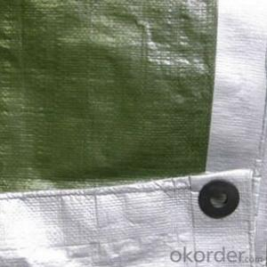 Green & Silver Tarpaulin Sheet