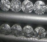 Silver fabirc pe tarpaulin