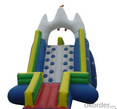 Popular Sport Game Inflatable Bouncing Castle
