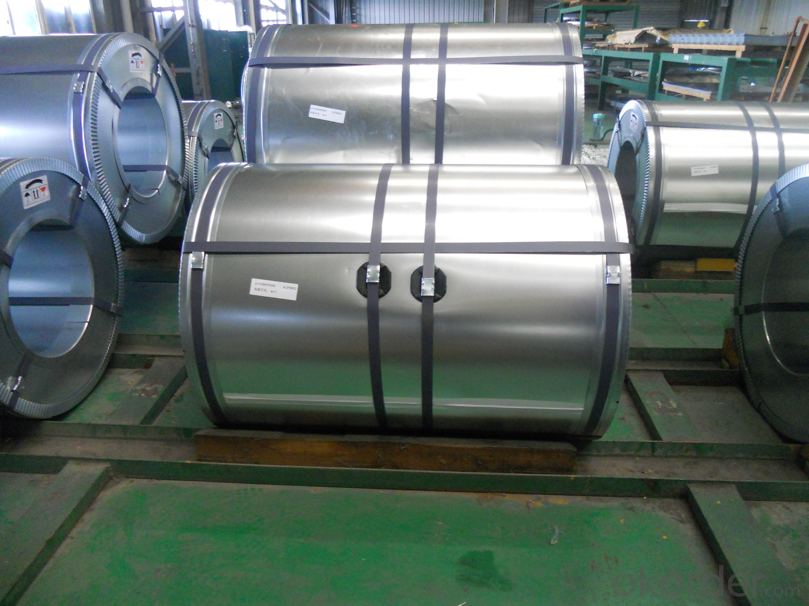 Galvanized Steel Coil-JIS G 3302 SGCC-0.8mm*1250mm