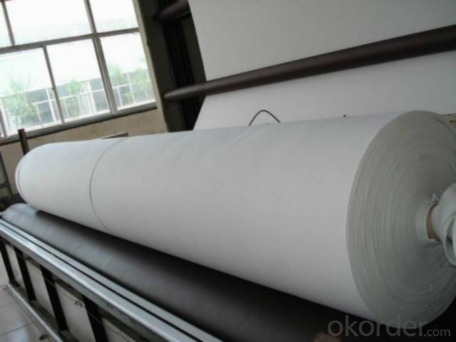 Nonwoven Geotextile for Road Construction