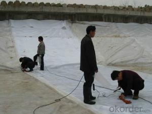 Excellent PP Woven Geotextile for Road Engineering