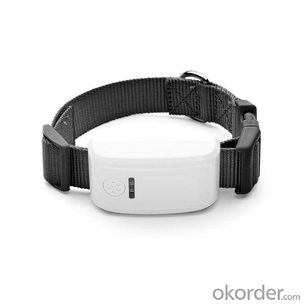 Long standby small waterproof GPS Pet Tracker