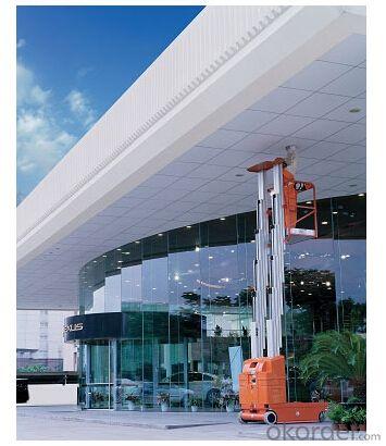 Electric Aluminium Work Platform Dual Mast AMWP2000