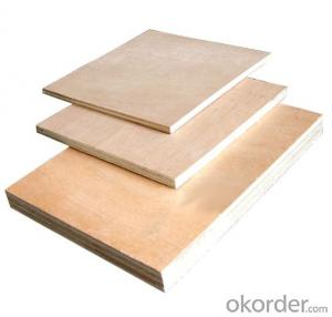 Plywood with Poplar Material for Recycling Using for Concrete Casting