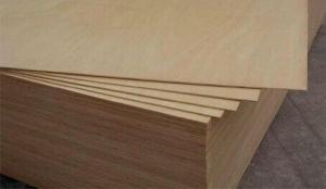 Brown/dynea brown/black plywood in Good quality