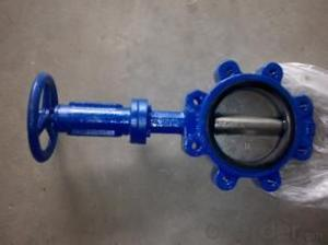 butterfly valve PTFE bushing ensure maximum shaft support and centralized alignmentChina (Mainland)
