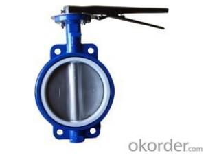 butterfly valve  PTFEStandardSize: DN40-DN1200 Place of Origin: China (Mainland)