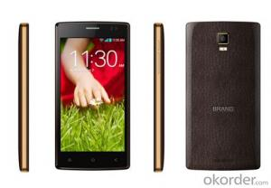 5-Inch IPS Fwvga 854*480 Android 4.4 Smartphone