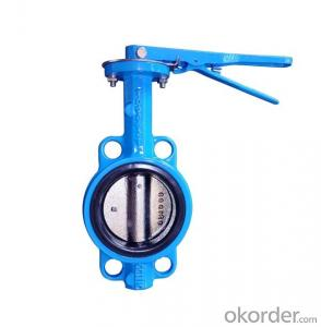 DN100 Wafer Type Butterfly Valve BS Standard BS5163