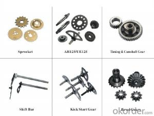 Customize worm Gears for Machine , cars ,moto OEM