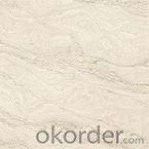 Low Price + Polished Porcelain Tile + High Quality B8805C