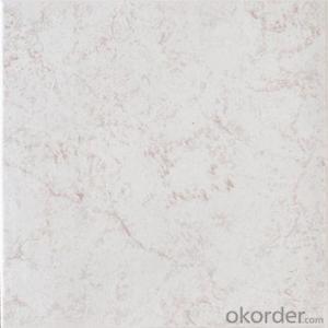 Glazed Floor Tile 300*300mm Item No. CMAXP314