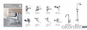 Faucet  sprayers  and  showers  Brass WRAS;ACS;EN817,ISO9001
