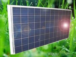300W All Black Poly Crystalline Silicon PV Solar Module