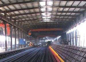 Hot Rolled Deformed Steel Bar 12M Straight