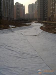 Needle Punched Nonwoven Geotextile for Coast Engineering