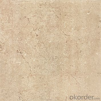 Glazed Floor Tile 300*300mm Item No. CMAXR09