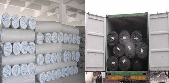 Black Polypropylene Woven Geotextile for Construction