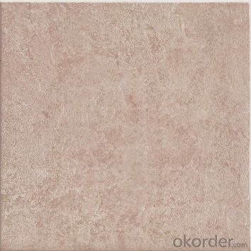 Glazed Floor Tile 300*300mm Item No. CMAX F3002