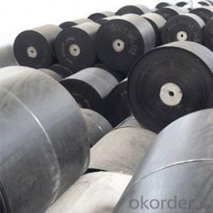 Power Nylon Conveyor Belt