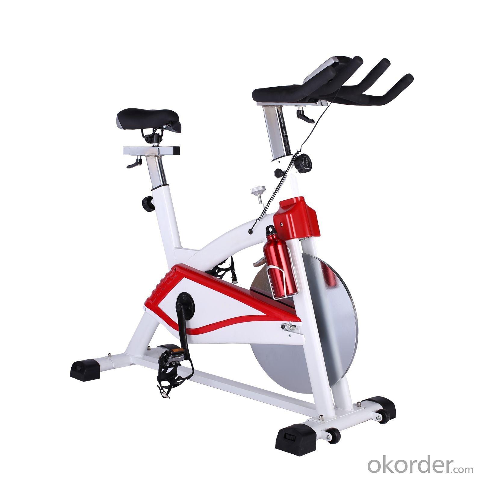 Spin Bike Exercise Bike,Home Use Bike 3000