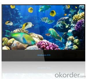 HD 110 Inch TV Glass-free 3D LED Display