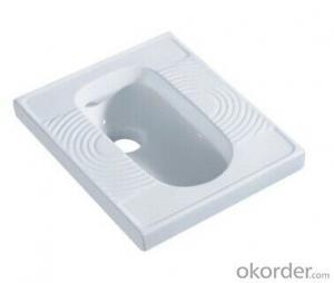 Wash Down Sanitary Squating Pan  -  5014