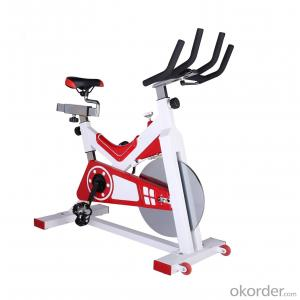 Spin Bike Exercise Bike,Home Use Bike 750