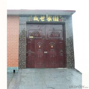 Iron Steel Security Metal Door 1706 of Hot Sale