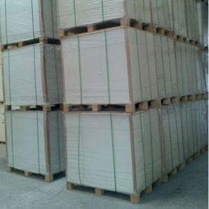 Factory Sell Immediately PE Coated Ivory Paper Good Quality