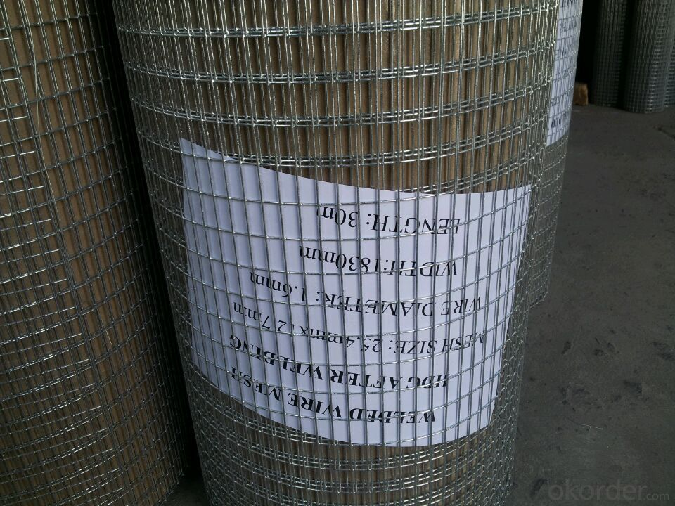 Hot Sale Galvanized And Pvc Coated Welded Wire Mesh