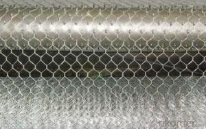 Negative Twist Electro Galvanized Hexagonal Wire Mesh