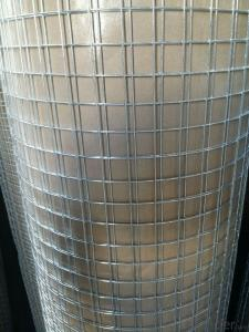 Electro Galvanized Welded Wire Mesh For Fencing
