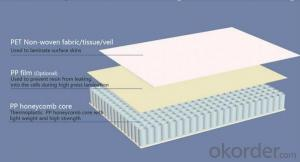 light-weight energy-saving EPS cement sandwich panel