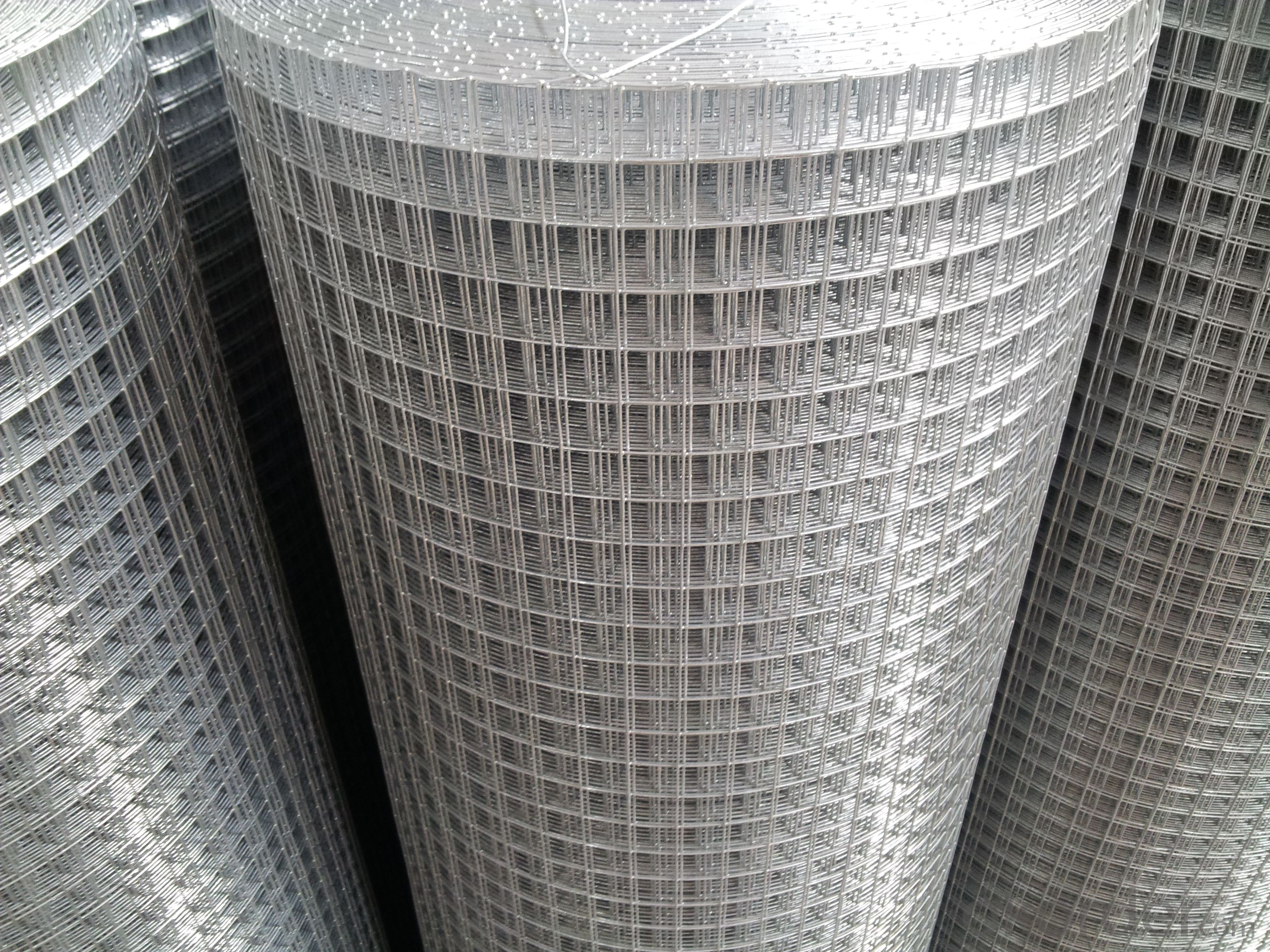 Best Sale Hot Dipped Galvanized Welded Wire Mesh For Fencing