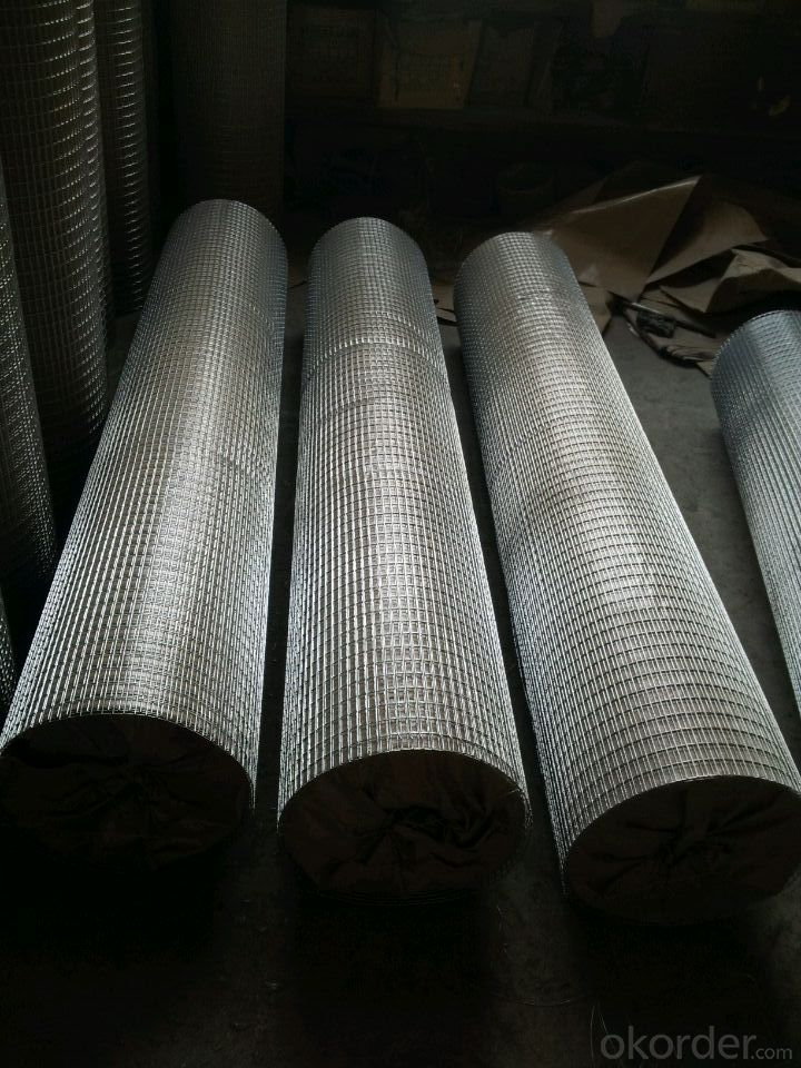 Hot Dipped And Electro Gavanized Welded Wire Mesh