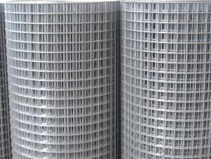 Hot Dipped Galvanized Welded Wire Mesh For Fencing