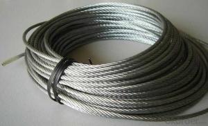 Stainless Steel Wire Rope Hot Sale and High Quality