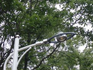 LED  Street Lamp Series  LED Street light ML018