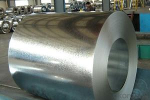 COATED GALVANIZED STEEL  Prepainted  galvanized steel coil  PPGI PPGL STOCK