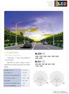 LED  Street Lamp Series  LED Street light  ML029